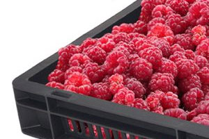 Shelf Life: Goplasticpallets.com nurtures range of fruit trays in time for picking