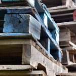Poor pallet hygiene poses threat to UK economy