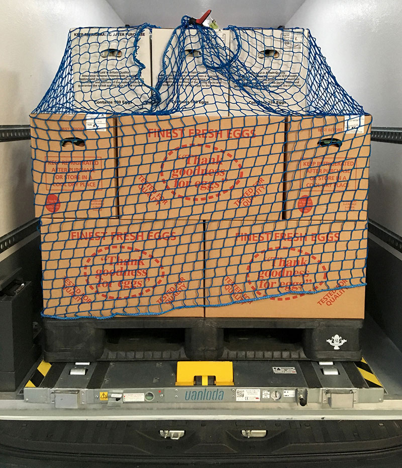 Plastic Pallets Provide Egg-cellent Solution for Fragile Deliveries